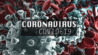 Coronavirus: What is Really Going on? | Top5s Documentary