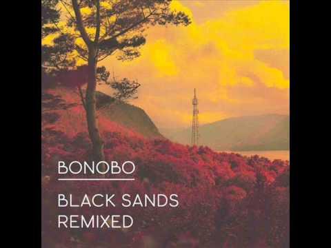 Bonobo_Stay the same (Mark Pritchard Remix).wmv