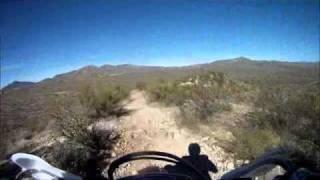 Wildcat Rocky Ridge Return