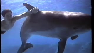 Flipper (1996) Teaser (VHS Capture)