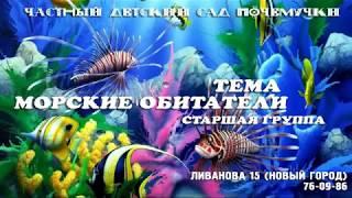 видео Жизнь морей и океанов средняя группа