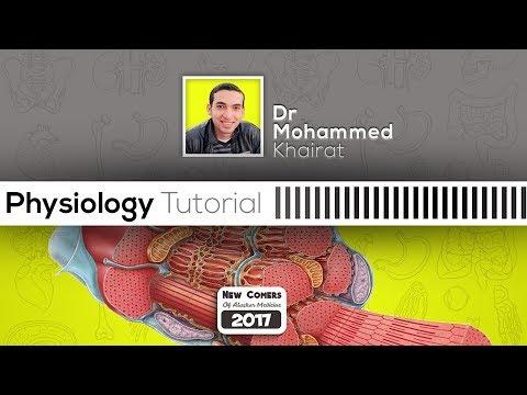Physiology | Facilitated Diffusion