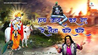 Haye Jadoo Kar Gaye Re Naina || Always Hit Krishan Bhajan || Vimal Dixit