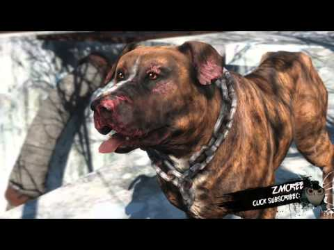 How To Get Multiple Dogs In Fallout 4