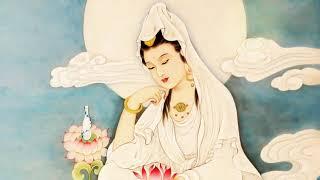 Loi Phat Day - Tu Nhu Cuu Lua Chay Dau