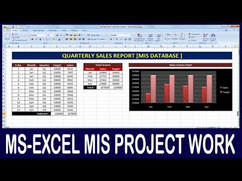 Ex- 04 Microsoft Office Excel MIS Project How To Make Quarterly