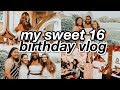 my sweet 16 party vlog