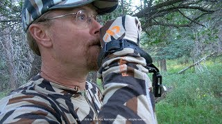 Hunting Pressured Bulls on Colorado Public Land - Mid-September Archery 6x6 at 17 Yards!