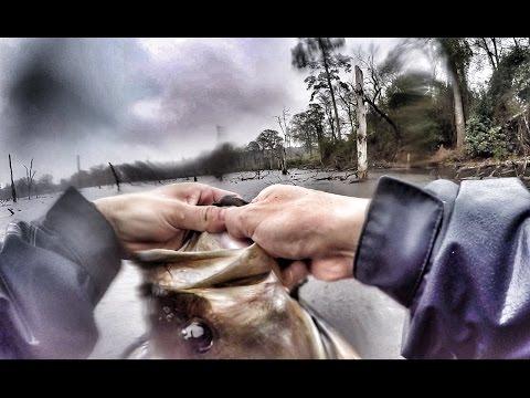 Sunday funday bass fishing in the rain youtube for Bass fishing in the rain