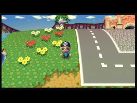 Animal Crossing: City Folk - Tour Of My Town