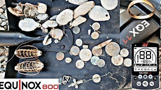 Коп на берегу водохранилища с Minelab Equinox 800. Treasure hunting. Beach metaldetecting