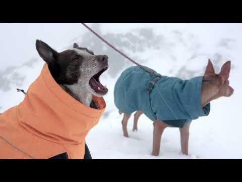 Hurtta Expedition Parka - Hundtäcke Vattentätt Värmetäcke