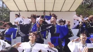 秋田市 千秋公園桜祭りで行われた ヤートセin千秋公園 2日目、 1回目...