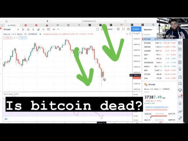 bitcoin gold indėlių bitfinex
