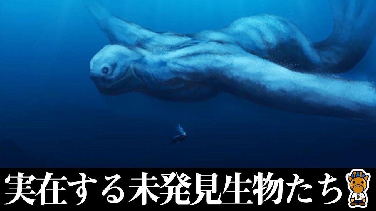 【目撃情報あり】まだ見つかっていない生物6選