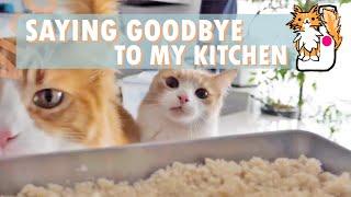 Saying goodbye to my kitchen!  Cooking vlog