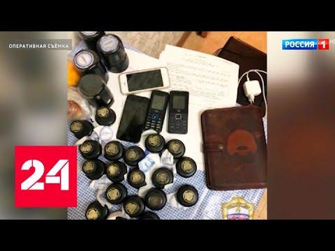 Миллионы отмывали на дому: задержана банда банковских дельцов - Россия 24
