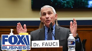 Fauci, CDC Director Redfield testify before House