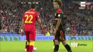 Belgium National Football Team : The New Spain ? [Part 1]