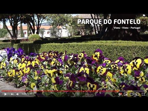 Parque do Fontelo - Viseu - Portugal