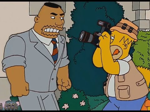 The Simpsons - One Day Homer's Photographer!