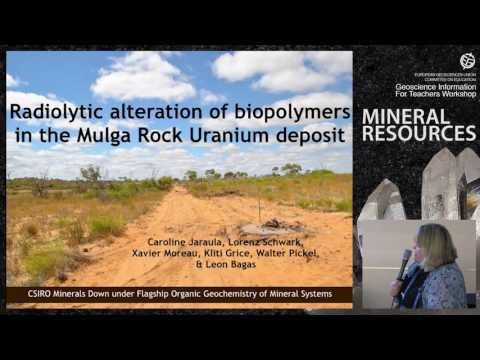 EGU GIFT2015: Role of organic geochemistry in mineral deposits