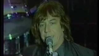 The Animals - Meltdown (Live, 1983 reunion) ♥♫