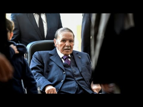 "Algeria crisis: ""Bouteflika's resignation decision was not expected"""