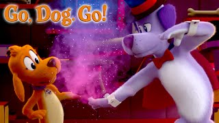 The Magic and Talent Show | GO, DOG, GO | NETFLIX