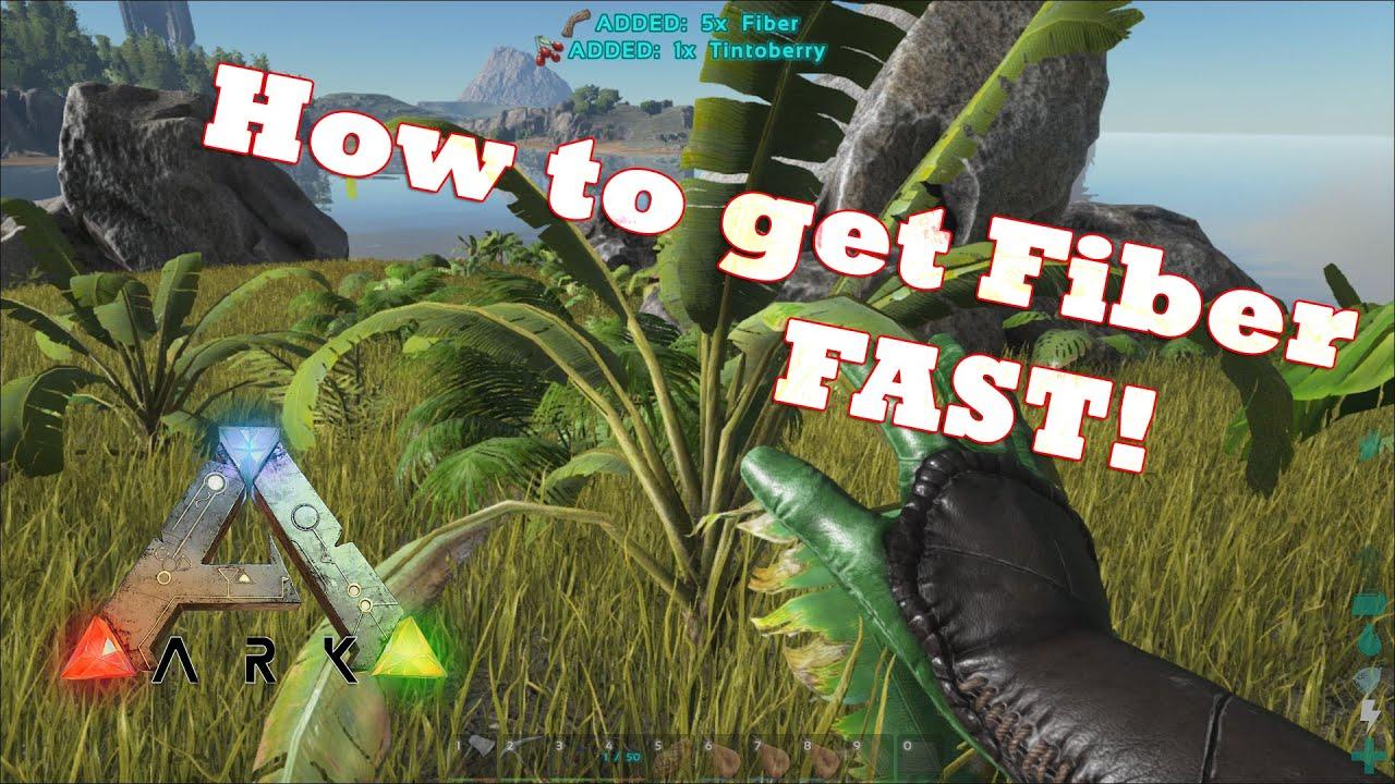 Ark Survival Evolved How To Get Fiber Fast Youtube
