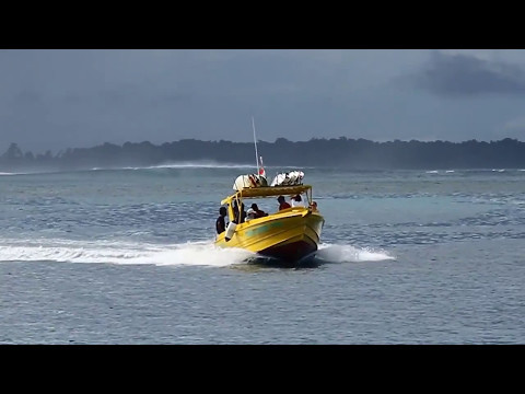 Aloita Luxury Resort - Mentawai Indonesia Resort