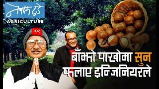 बाँझो पाखोमा सुन फलाए इन्जिनियरले......The Nepal Today [ Agriculture in Nepal ]