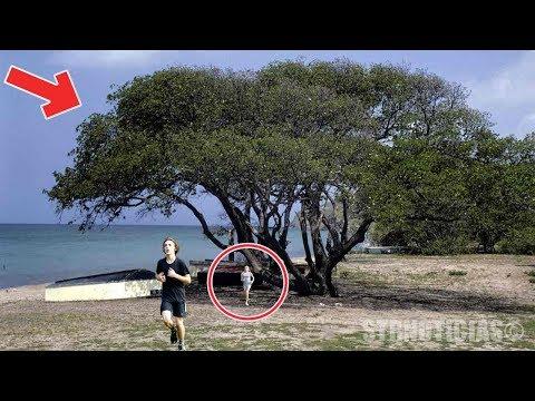 Si ves este árbol, corre de inmediato y no te acerques por nada del mundo ¡OCULTA ALGO  PELIGROSO!