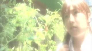 劇場映画『約束の地に咲く花』の予告 監督:遠藤一平 出演:三津谷葉子 ...