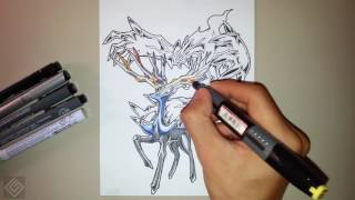 Legendary Motality Duo Pokemon (Xerneas and Yveltal) - Speed Drawing | Labyrinth Draw