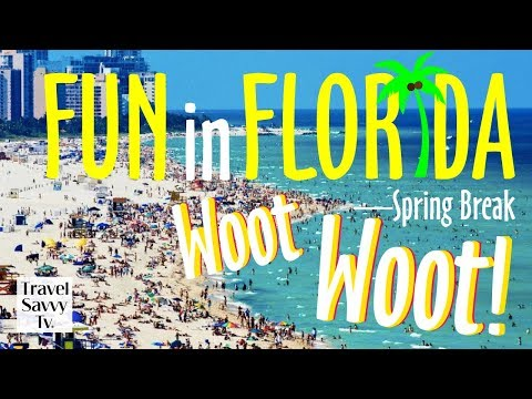Five Favorite Family Fun Ideas In South Florida for SPRING BREAK