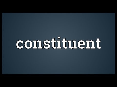 Constituent Meaning