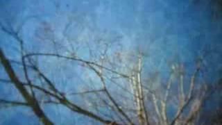 FilFla 'WST' MUSIC VIDEO