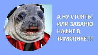 А НУ СТОЯТЬ, А ТО В ТИМСПИКЕ ЗАБАНЮ! - MOMENTS #13