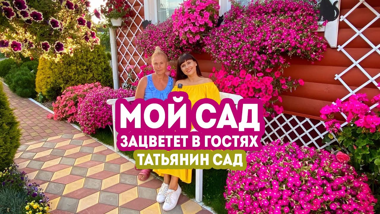 Мой сад.  Зацветет в гостях. Татьянин Сад 2020