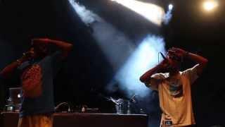 Del The Funky Homosapien - Mistadobalina @Live Araraquara Brazil