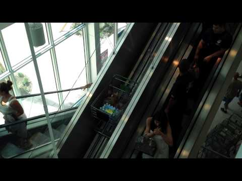 Miami Beach Publix Supermarket Grocery basket escalator