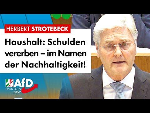 Haushaltsplan: Schulden vererben – im Namen der Nachhaltigkeit! – Herbert Strotebeck (AfD)