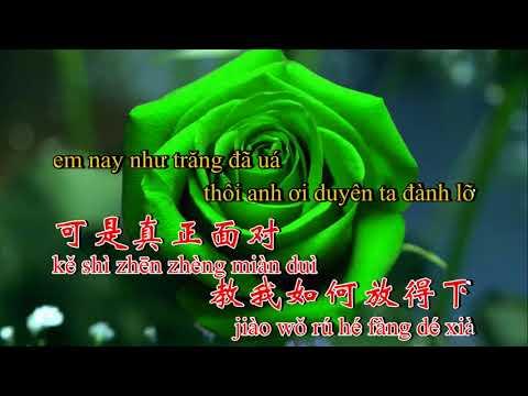 ☘️Nhạc Phim☘️❣️Nụ Hồng Mong Manh❣️⚜️8-4-2019⚜️Lâm Phong ft