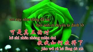 Nụ Hồng Mong Manh, nhạc hoa, song ngữ karaoke, 曾經心疼, Ceng jing xin tong