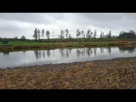 TOP BOARDS, RIVER NITH, DGAA FISHINGS