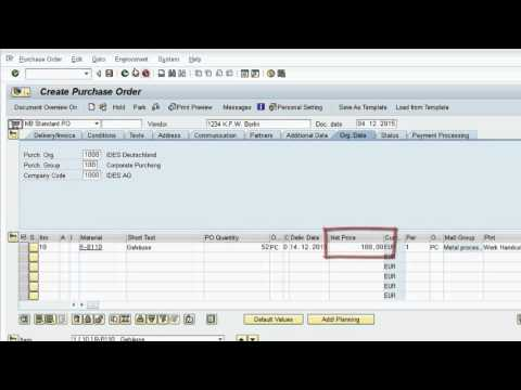 SAP ERP - Purchase to Pay (P2P)