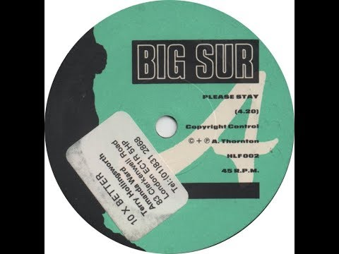 Big Sur feat Andy Thornton, Please Stay, Indi-Pop