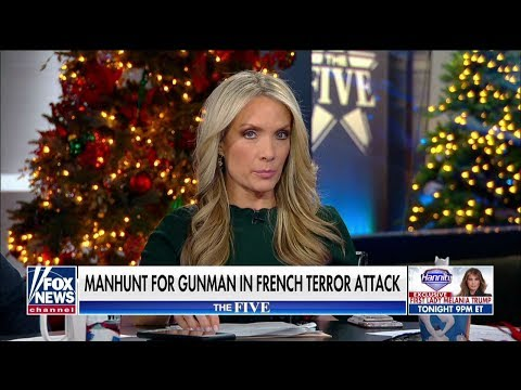 Dana Perino: 'No Nation Is Free' From Terror Following France Attack
