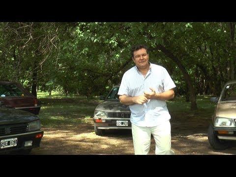 PEUGEOT 505 40 ANIVERSARIO - ESCALA CLASICA #611 (1de3)